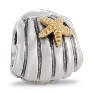I love this pandora bead :)... more beach theme... not dropping a hint or anything!
