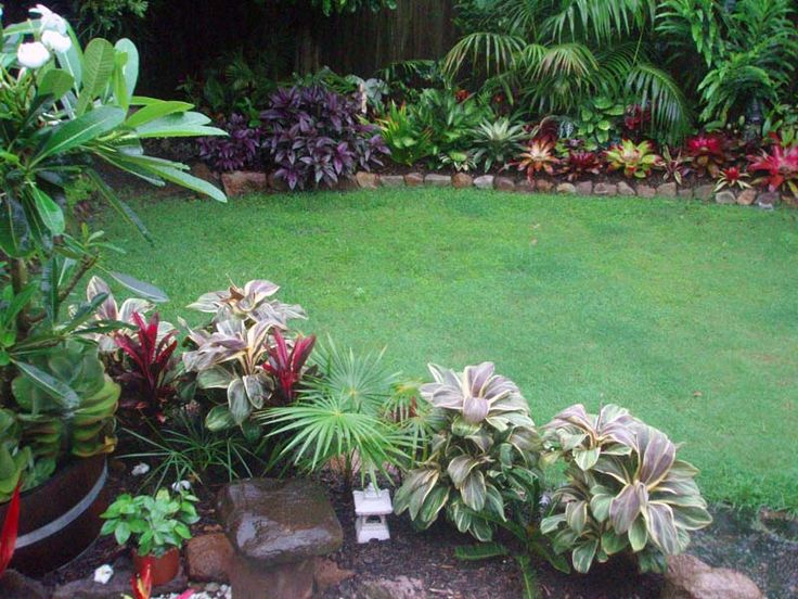 Tropical Garden Ideas Brisbane 122 best garden images on pinterest | landscaping, gardens and