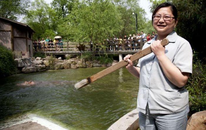 #интересное  Как чистят зубы бегемоту в шанхайском зоопарке (5 фото)   Как оказалось, даже бегемоту в зоопарке требуется специальная личная гигиена :) Для того, чтобы почистить зубы этому животному, у работников зоопарка даже есть специальная зубная щетка.       д�