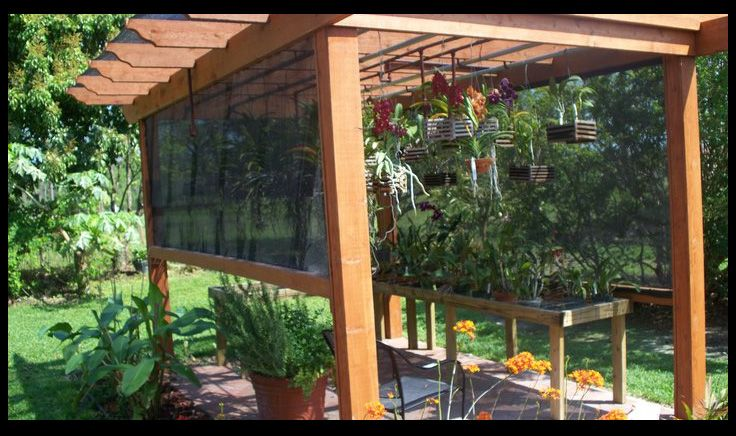 17 Best Images About Shadehouse Garden On Pinterest
