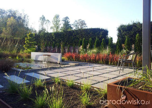 Moja codzienność - ogród Oli - strona 996 - Forum ogrodnicze - Ogrodowisko