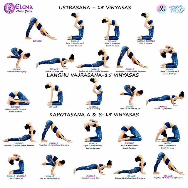 @elena_miss_yoga . Episode 4️⃣9️⃣ . #ashtangavinyasawithelena #nadishodhana #secondseries #ustrasana #camelpose #laghuvajrasana #littlethunderboltpose #kapotasana . #favorite Sequence always honest, and unforgiving With @re3life #re3 #re3life @yoga.tutorials . ➡️Ustrasana 15 Vinyasas Dristi: bhrūmadhye (third eye) . Sapta 7: Inhale, jump and land on your knees, place both hands on the back of the hips . Astau 8: Exhale, bend backward and place the hands on the heels. Push the hips f...