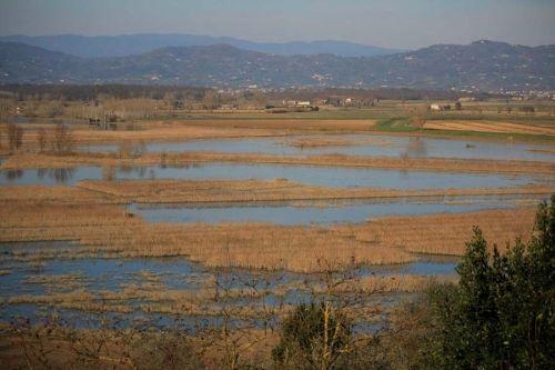 Padule di Fucecchio - Cicloturismo Toscana - Percorsi in Bicicletta | Tuscany Bike Experience