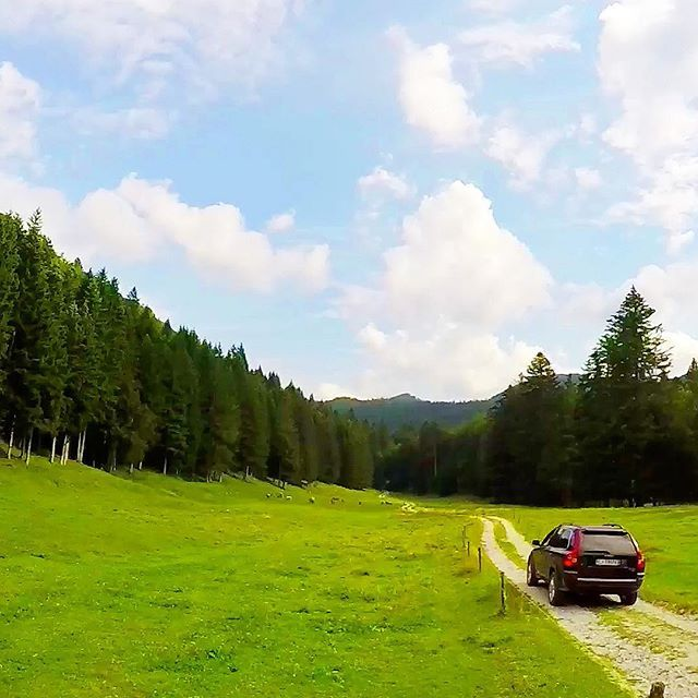 On the road #ontheroad #ontheroadagain #suv #suvs #letsgo #holiday #holidays #mountain #mountains #mountainman #mountains #forest #italy #riding #car #adventure #adventuretime #adventuretravel #travel #holiday #holidays #sunny #sunnyday #like4like #likes4like #likeforlike #enjoylife
