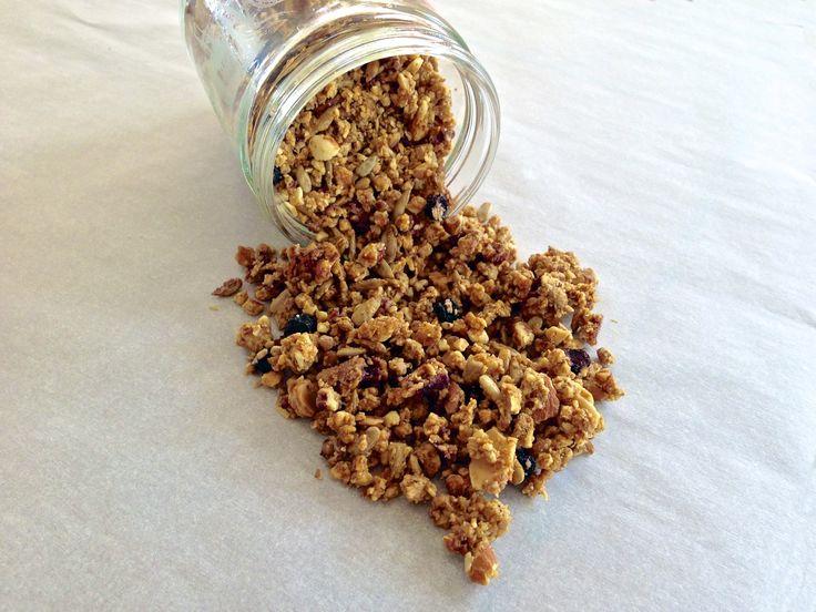 Blueberry Granola (Gluten Free, Grain Free, Paleo)