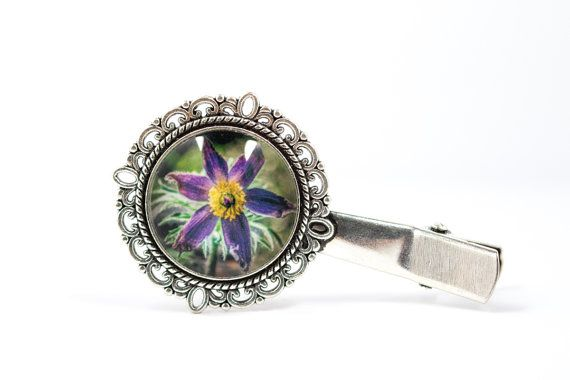 Pulsatilla hair pin