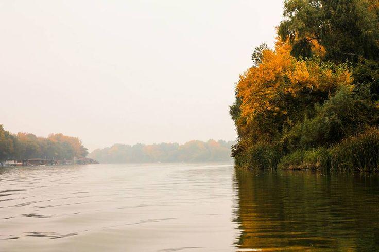 Tisza a Tisza-tónál/ The Tisza river by the Lake Tisza (Tiszafüred, Jász-Nagykun-Szolnok, Northern Great Plain)