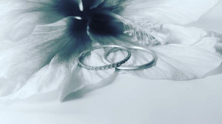 Når hawaiiblomsten og smykkerne klær hinanden Når jeg ser dette billede drømmer jeg, míg til en helt anden verden. Freden og harmonien i dette billede er bare så skøn. #hvisk #hviskstyling #hviskstylist #hviskjewellery #hviskbw #smykker #jewellery #ringen #fingerring #fingerringe #ring #blomster #blomst #hawiiblomst