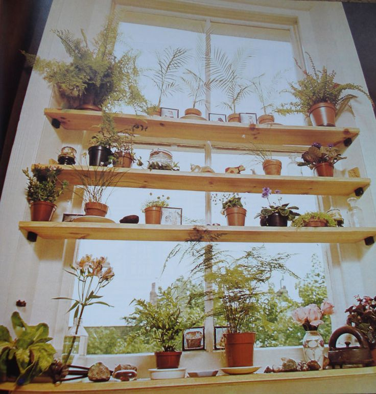 Kitchen Window Herb Planter: 47 Best Window Gardens Images On Pinterest