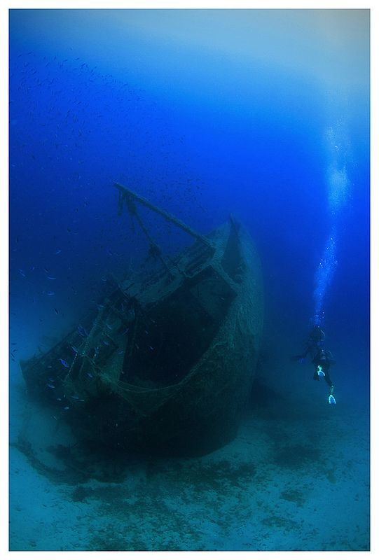 Stern of the Kyra Leni wreck  #diving #underwater #photography #greece #scuba #boatdive #athens #shipwreck