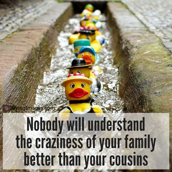 Crazy Cousin Birthday Quotes: Best 25+ Cousin Quotes Ideas On Pinterest