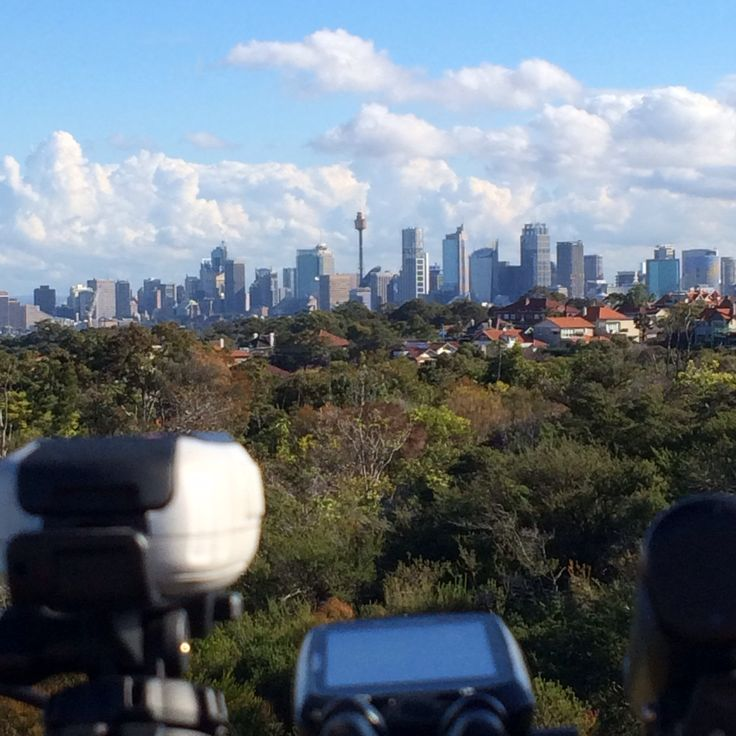 Sydney skyline from Mosman Heights: An excellent part of cycling is when you round a corner or reach the top of the hill and catch a surprise view. #cycling #bike #ride #explore #exercise