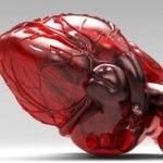 Canlandırıcı Tıp ve Doku Mühendisliği >> Kök hücre tedavisi ile laboratuarda insan kalbi yetiştirdiler   Kök hücre tedavisi hızla yaygınlaşıyor. İnsanlar ve hayvanlar üzerinde yapılan deneylerde kök hücreleri kullanan doktorlar laboratuarda canlı insan kalbi, karaciğer, insan kası ve kan damarları yetiştiriyor.