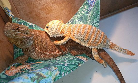 Knitting Pattern For Bearded Dragon : 25+ best ideas about Crochet Dragon Pattern on Pinterest Crochet dragon, Cr...