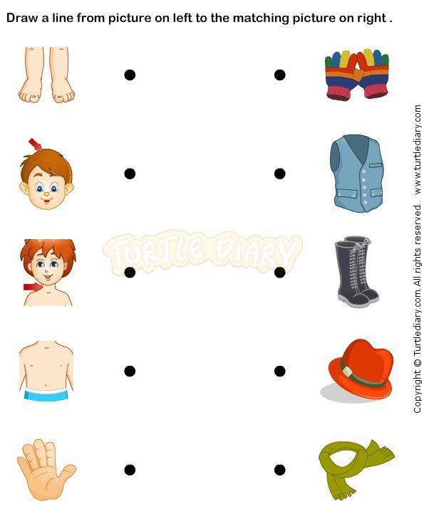Body Parts Prek worksheets %u2013 preschool science