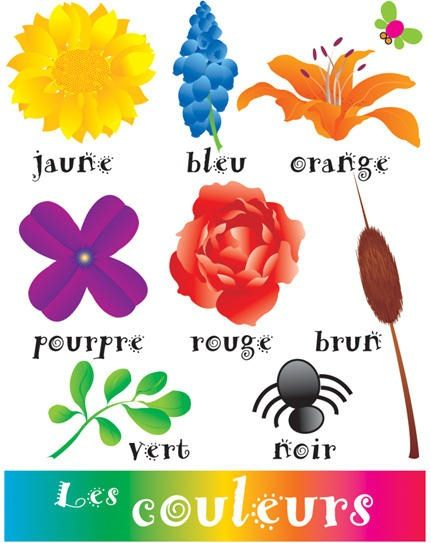 French couleurs