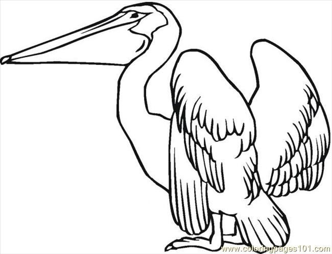 17 Best images about PenInk Winged