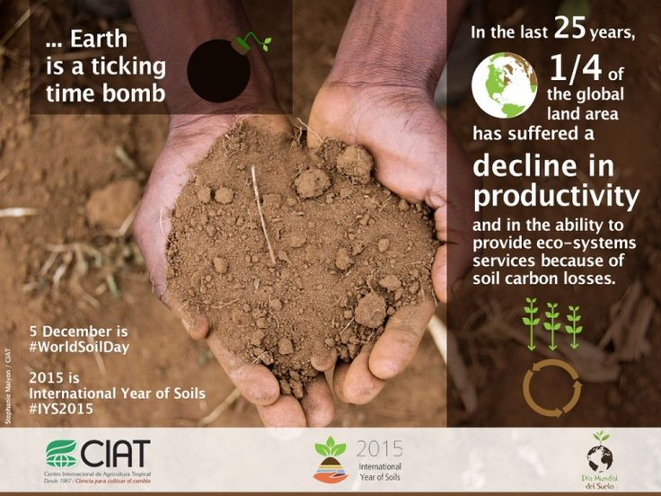 #WorldSoilDay /...Earth is a ticking time bomb