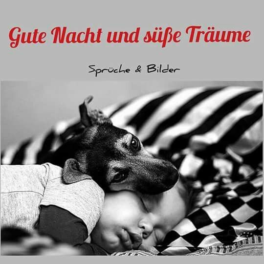gute nacht Freunde , bis morgen - http://guten-abend-bilder.de/gute-nacht-freunde-bis-morgen-196/