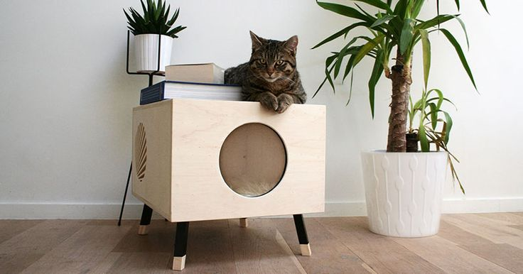 This Minimalist Modern Cat Bed Doubles As A Functional Side Table