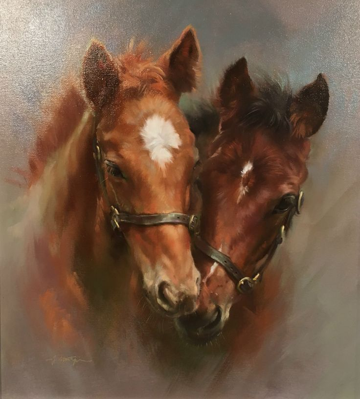 Joyful foals Jacqueline Stanhope – Jackie Young