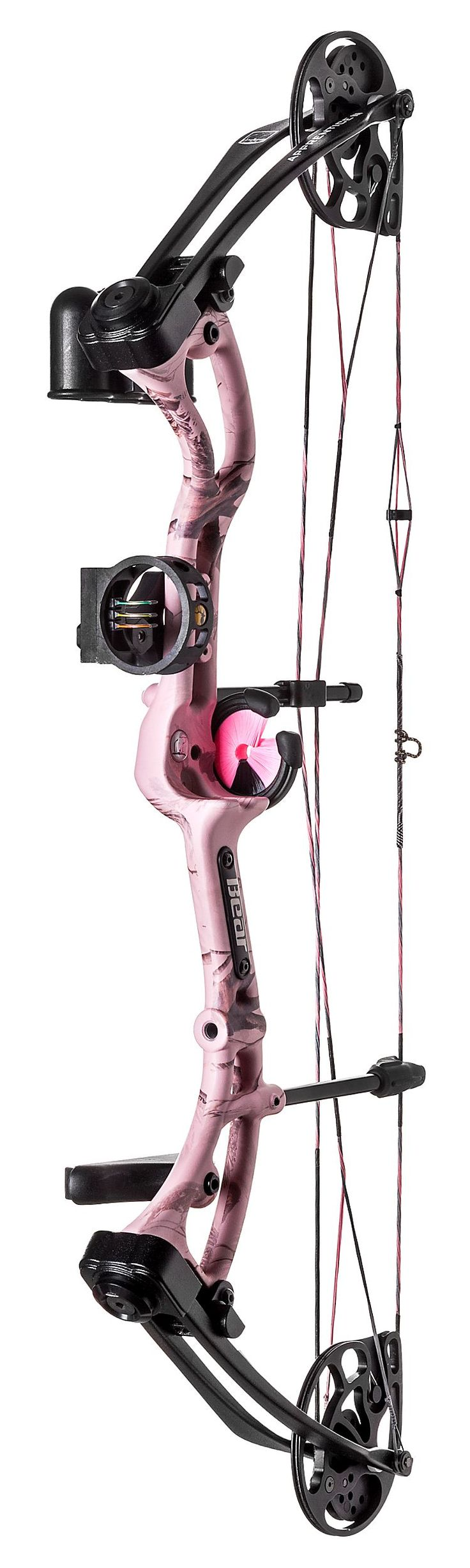 Bear Archery Apprentice 3 RTH Compound Bow Packages | Bass Pro Shops