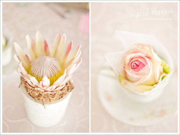 Protea and rose simple yet effective