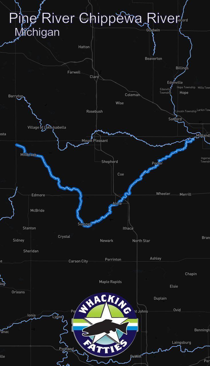 Pine River Chippewa River, Michigan fly fishing report