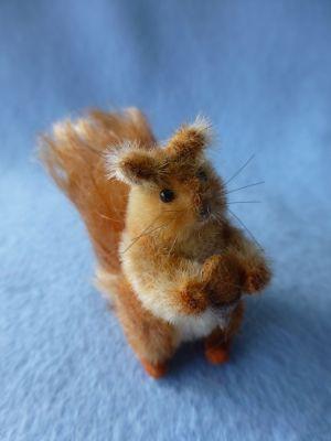 Nutkins - a miniature squirrel