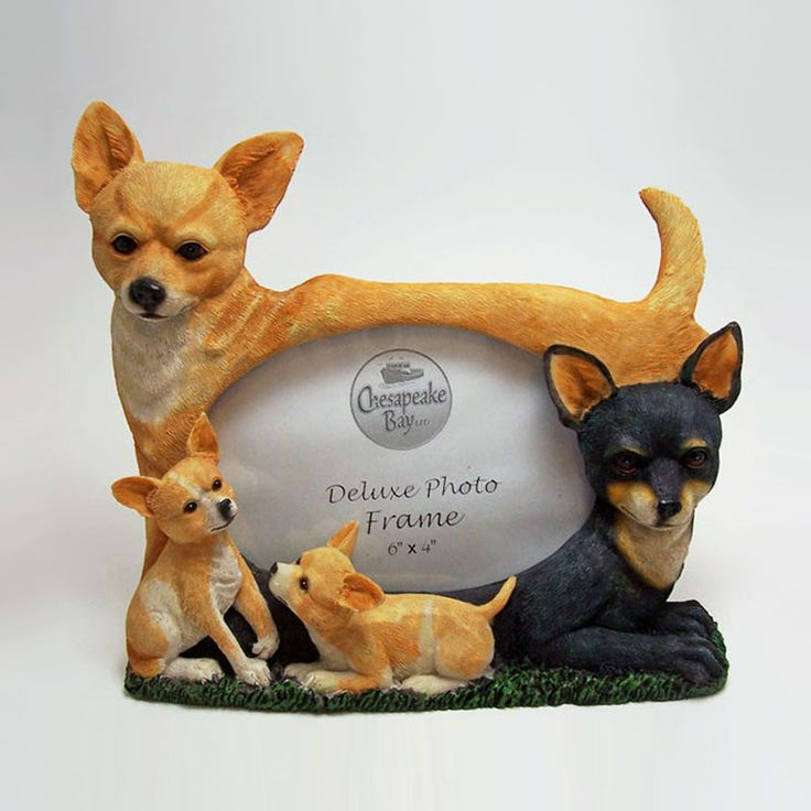 Chihuahua Dogs and Puppies Figurines Polyresin Picture Photo Frame - PFD676L - Chihuahua dogs and puppies polyresin dog figurines table or desk photo frame with easel back. Holds one 6 x 4 picture Great gift for your dog lover friend or yourself - FOR SALE at www.ClaudiasBargains.com