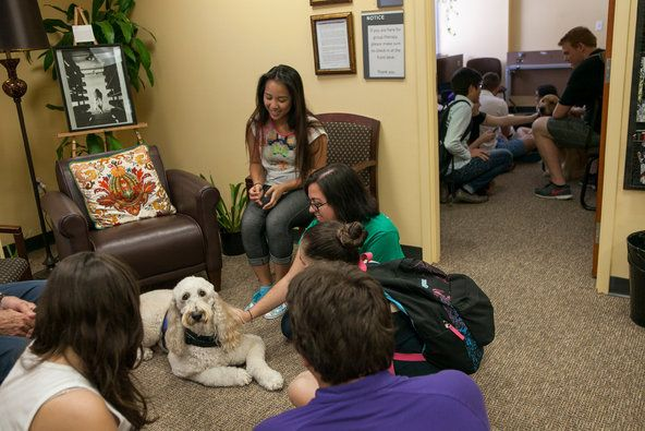 Students gathered around a therapy dog during  event - Anxious Students Strain College Mental Health Centers