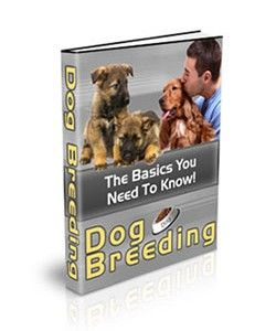 Dog Breeding – The basics that You Need To Know 1) Knowing that you'll be a good breeder, and making sure that you are the one that is doing it right.2) The Basics behind breeding. You will learn how to breed dogs, and you'll learn what you need to know about all of the steps of the breeding process. This is invaluable information that you cannot find anywhere else! - See more at: http://selfdevelopmentebooks.com/product/dog-breeding/#sthash.YmORKvff.dpuf