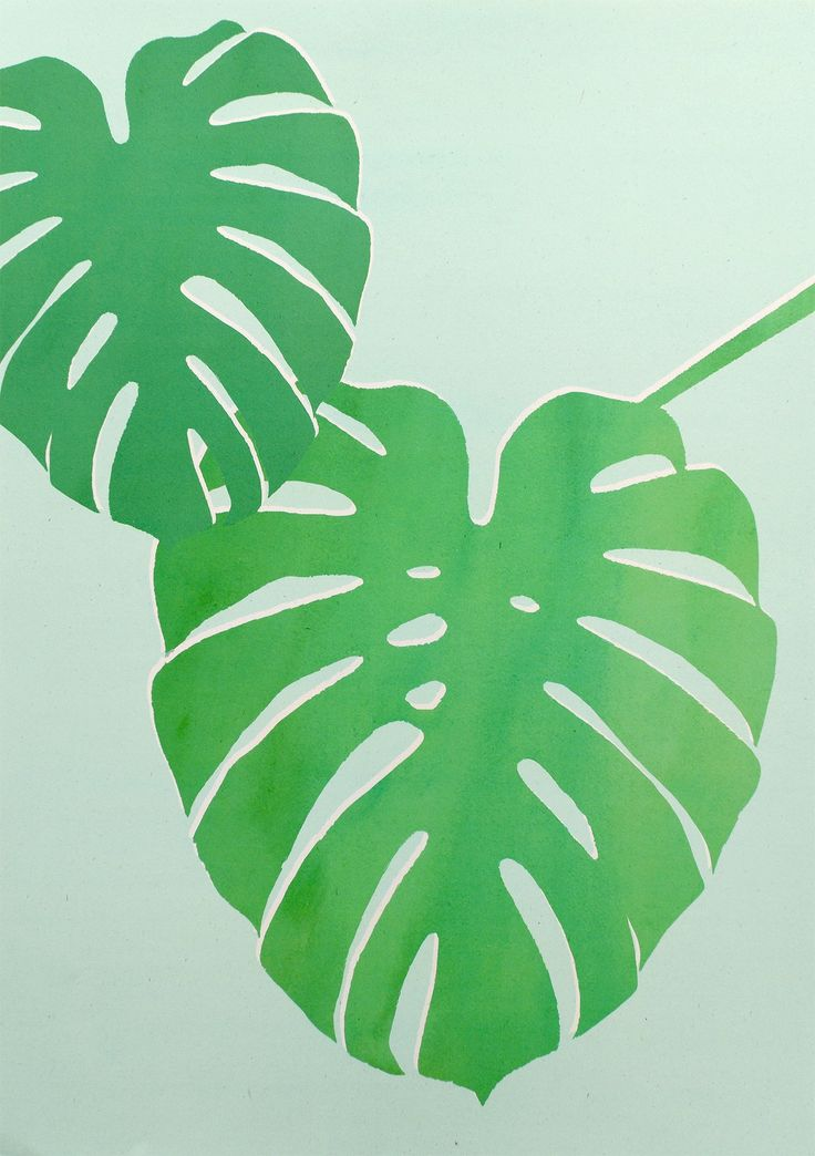Bring the outside in and brigthen up your walls with this beautiful botanical print from Olli Ella.  Monstera has been lito printed in teriffic shades of green on flecked recycled paper.