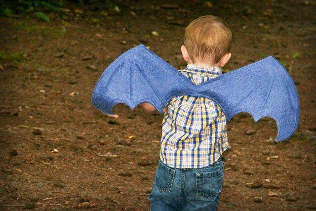ailes de dragon