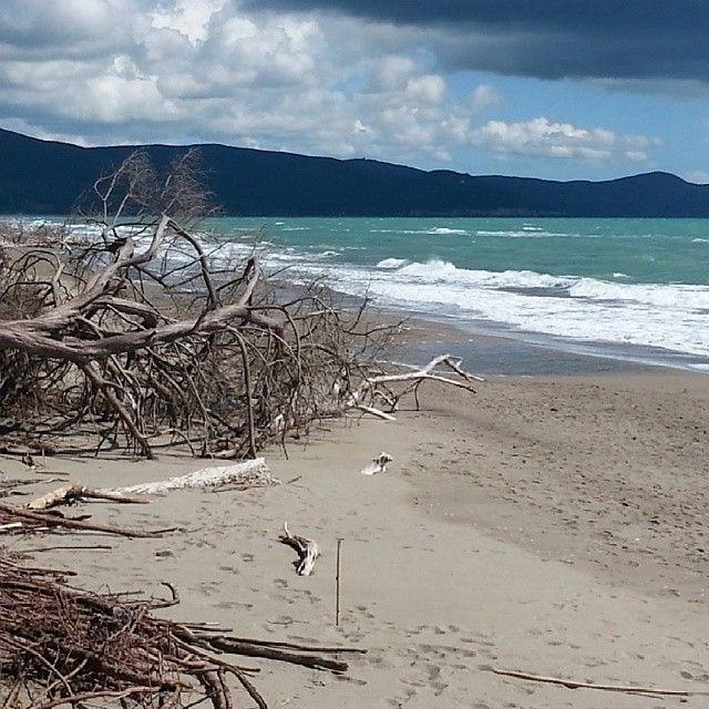 Spiaggia di Alberese by @olivari manuela