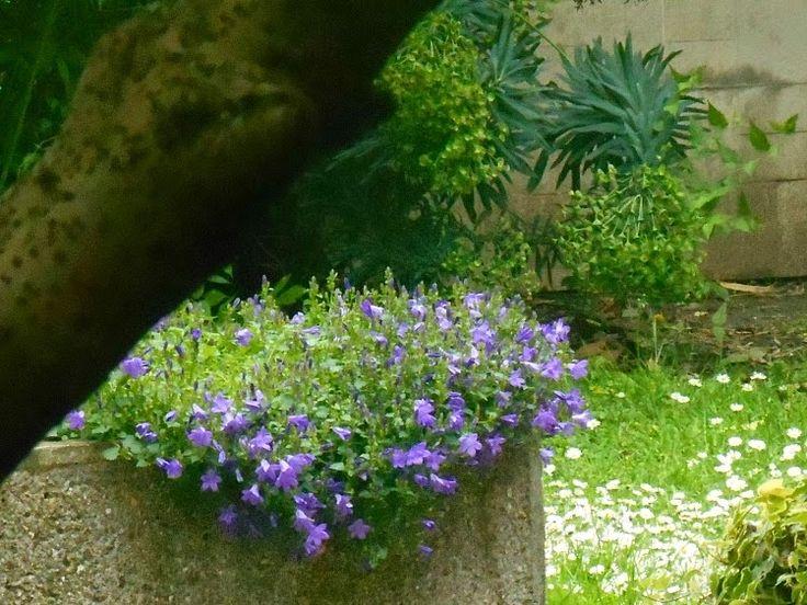 #garden FITNESS MOTIVATION jak żyć zdrowo, motywujące cytaty, Dlaczego warto się ruszać i dlaczego aktywność fizyczna pomaga nam lepiej pracować?