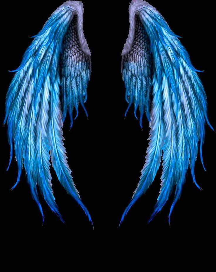 yo en highschoolDxD(tn x highschool dxd x harem) (remix) in 2021   Angel wings art, Wings wallpaper, Wings drawing
