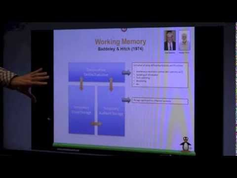Working Memory: What is it, and why is it important? - Award-winning neuroscientist Martin Buschkuehl, Ph.D., a recent addition to the MIND Research Institute team, explains how working memory affects problem solving and reasoning skills. His research on this subject helps guide MIND Research's efforts to enhance ST Math.