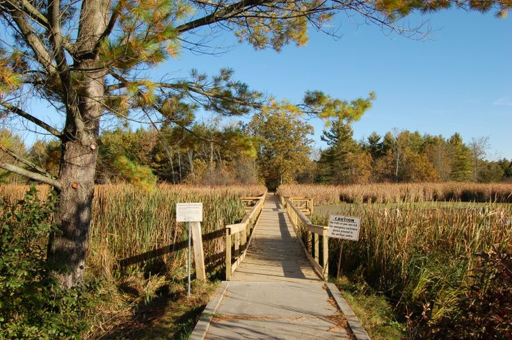 Take advantage of many opportunities for nature appreciation, education and recreation at this 394 hectare site throughout the seasons. There are areas of marsh, field and forest habitat and excellent outdoor recreation facilities.