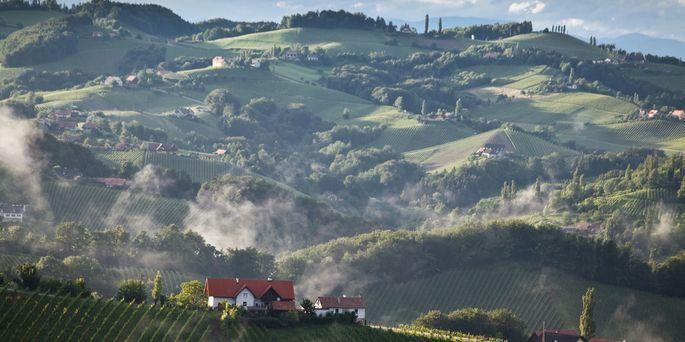 Southern Styrian wine region