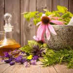 5 Best Herbs For Menopause Relief