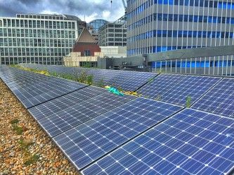 Facilities Management - green roofs