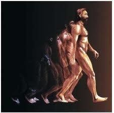 03 - Se alargaron las fibras del cuerpo, permitiendo que el hombre se irguiera sobre las piernas, dejando en libertad de movimiento a sus manos, esta gran transformación desarrolló su intelecto.  Y la maravillosa y permanente evolución del hombre se inició, seguirá y no se detendrá nunca.