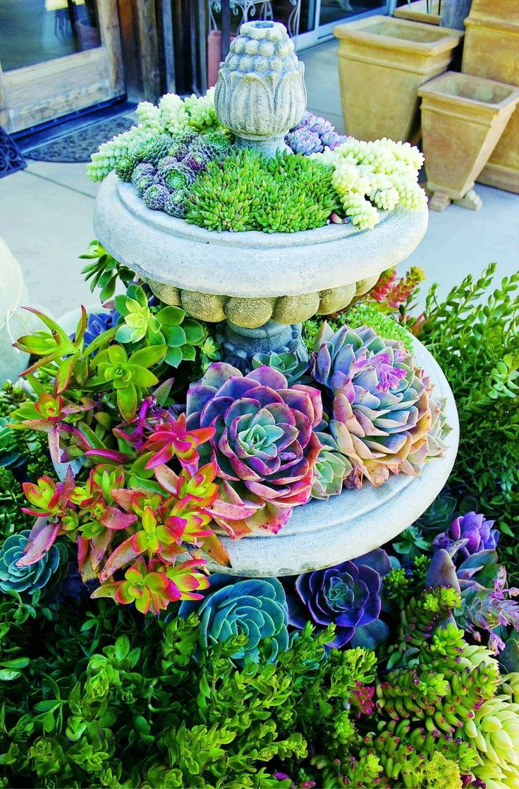 Perfect 39 Unique And Creative Garden Container Ideas You Never Thought Of