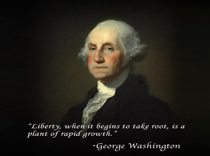 government and politics under the leadership of george washington Politics how political parties began  how political parties began  george washington won a large majority of electoral votes and became the nation's first.