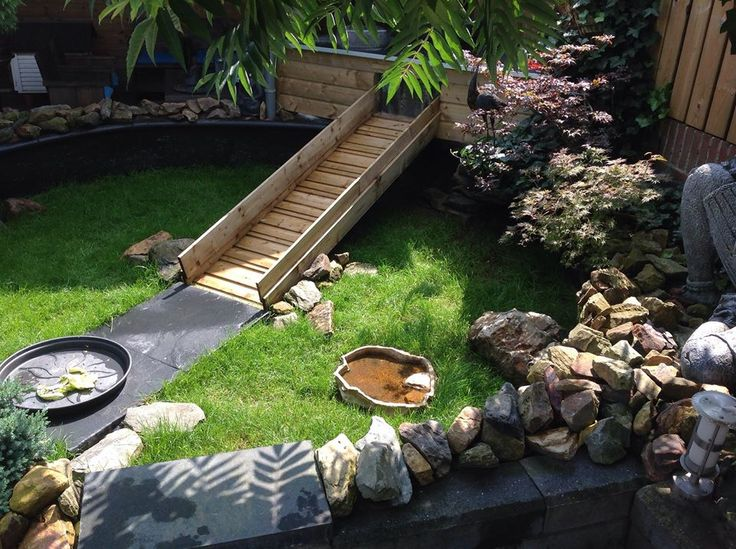 Really great outdoor tortoise enclosure/pen