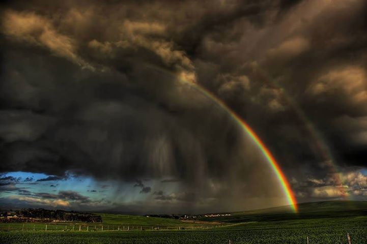 Life's Best #wait #for #the #rainbow