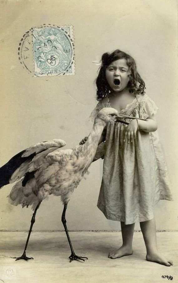vintage everyday: Bitten by the stork, ca. 1890