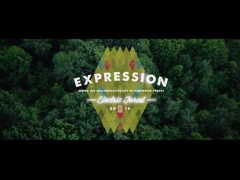 Electric Forest 2014 Part I: Expression - YouTube