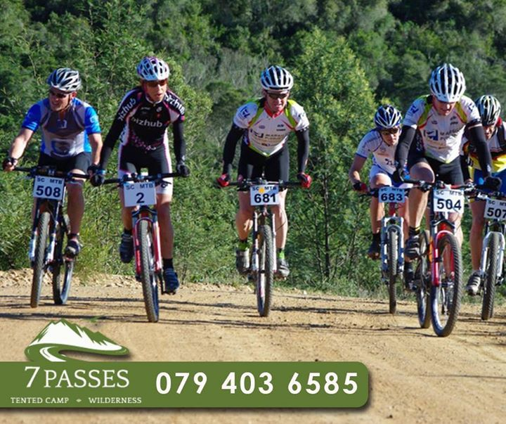 Whether you enjoy mountain biking, bird watching, walking, scenic drives, beaches, forest, fynbos, golf or just relaxing in #luxury, book your stay in one of our 6 luxury safari tented en-suites. For more information, call #7Passes on 079 403 6585. #Accommodation #GardenRoute